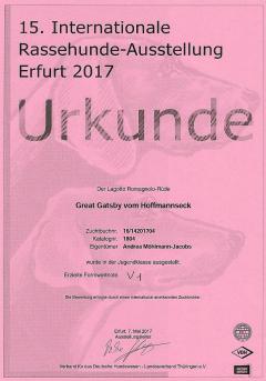 iaerfurt172